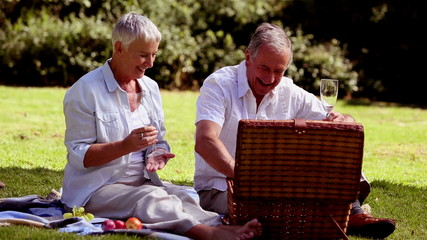 Mature couple having a picnic with white wine