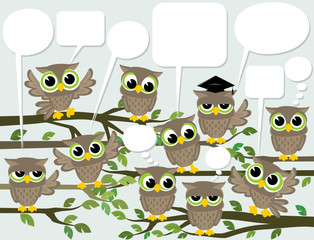 social network cute birds