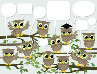 social network cute birds