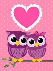 owls love greeting card