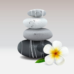 Spa stone with frangipani flower, vector Eps10 illustration.