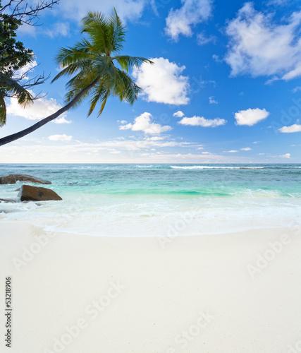 Fototapeten,seychelles,strand,meer,insel