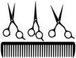 set of professional scissors - 53220313