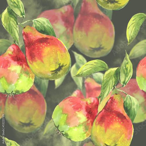 Watercolor pears - 53223769