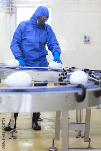 biotechnology - engineer at conveyor belt in gmo factory