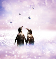 Penguin couple in fantasy landscape