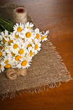 Chamomile flower on napkin