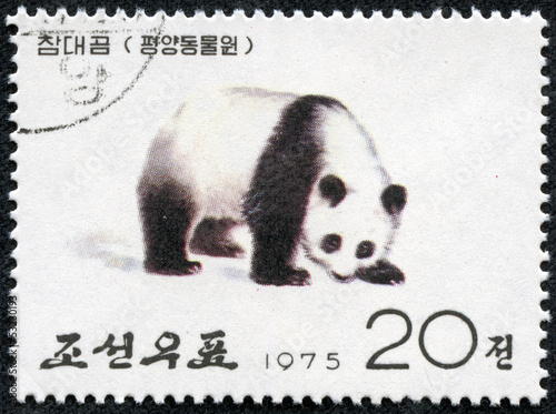 stamp printed in North Korea shows the Giant Panda