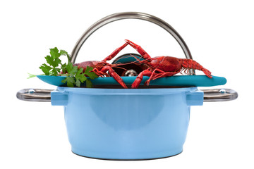crayfish Blue Pan