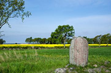 Viking age stone