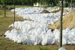 Hochwasser 20