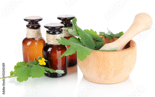 Blooming Celandine with medicine bottles isolated on white