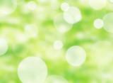 グリーンイメージ - 53245146