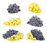 Set of Grape fruits white on white