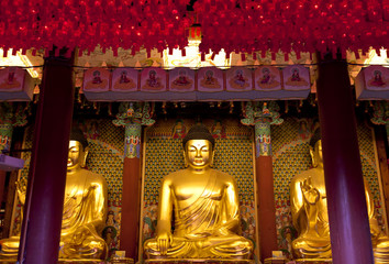 Buddha Statues in the Jogye-sa Temple, Korea.
