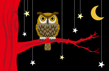 Owl in Starry night
