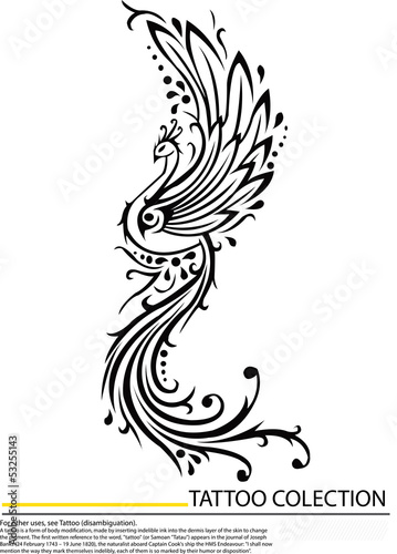 Chinese phoenix,Peacock tattoo design