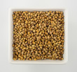 Coriander seeds in a square bowl isolated on white