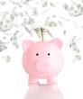 pink piggy bank  with money rain