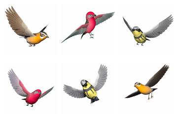 Set of songbirds - 3D render