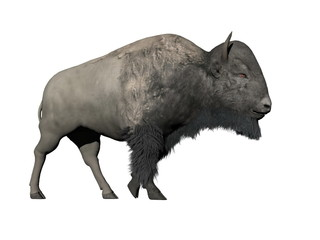 Bison walking - 3D render