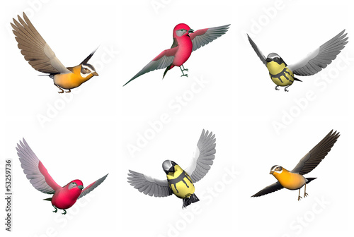 Set of songbirds - 3D render