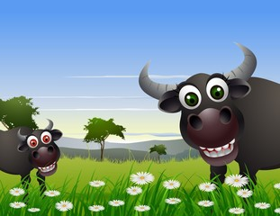 buffalo cartoon with nature background