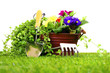 Gardening objects on a lawn and white background