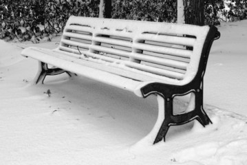 bench in the park covered by the snow