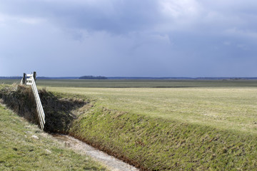 A rainstorm above the landscape on Texel in De Waal.