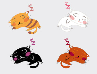 illustrated sleeping kitten