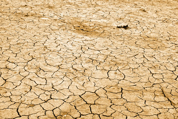 dry land in summer in europe