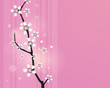 japanese cherry twigs card