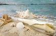 Strandgut: Flaschenpost mit Muscheln und Sand
