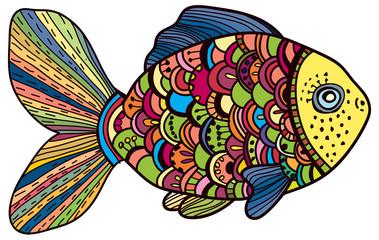 Beautiful color Fish