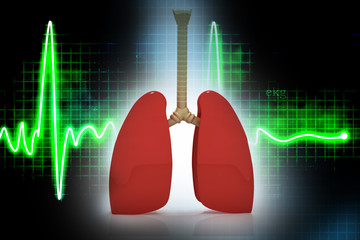 Human lungs in abreact  background