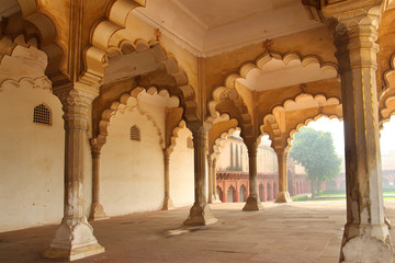 columns in palace - agra fort