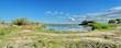 landscape Camargue
