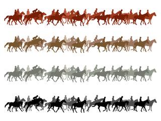 Big group of horses