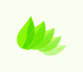 Vector leaf logo