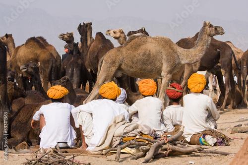 Tuinposter Kameel Pushkar Camel Mela. Rajasthan, India.