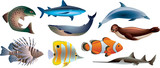 fishes and marine life photo-realistic vector set
