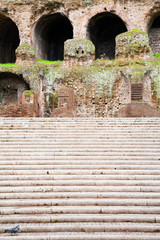 steps to Palatine, Rome, Italy