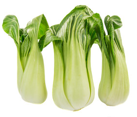 Chinese cabbage vegetable over white background