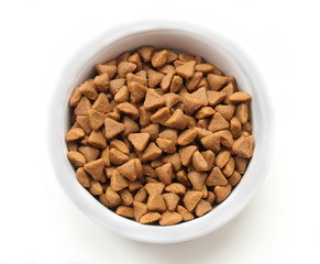 Dry cat food in a ceramic bowl