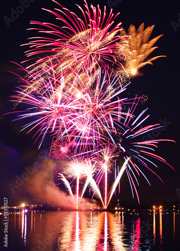 canvas print picture Colorful firework in a night sky