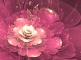purple fractal flower