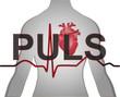 Puls Herz Medizin Hintergrund
