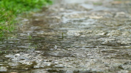 Spring heavy rain