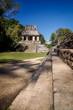 Palenque : Temple du comte vu des marches